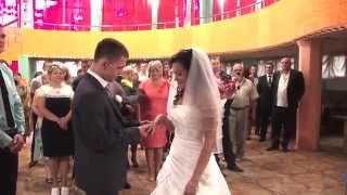 Дмитрий и Елена Свадебное видео