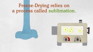 swiig shorts Freeze-Dried Foods
