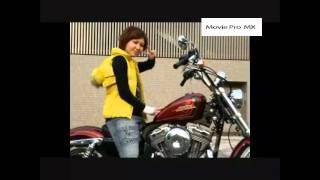 Harley-Davidson XL1200Vの魅力をご紹介!