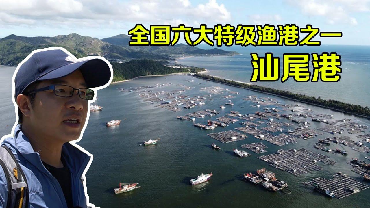 【一游记】全国六大特等渔港之一汕尾港,千军万马千帆起航之势,太壮观了