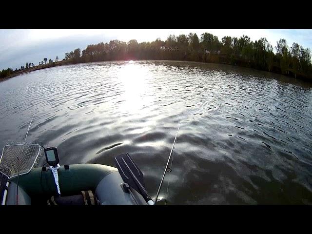 Выход щуки к лодке