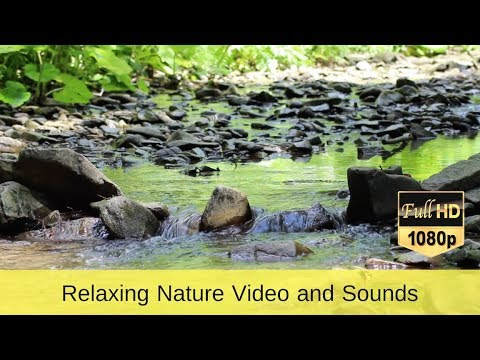 Relaxing Nature Video and Sounds - Water Sound Singing Birds Ambience, Sleep