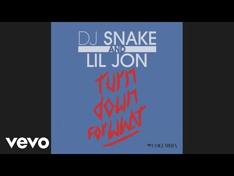 DJ Snake, Lil Jon - Turn Down What (Audio)