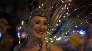 Passaros Do Paraiso   PD Carnivale 2019