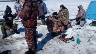 Рыбалка, Барнаул