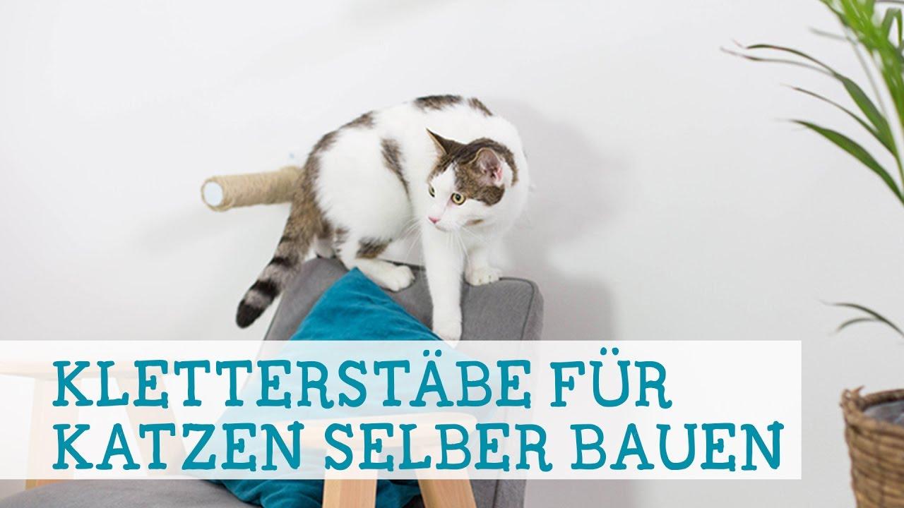 kletterstbe fr katzen selber bauen - Einfache Dekoration Und Mobel Samtpfoten Fuer Die Moebel