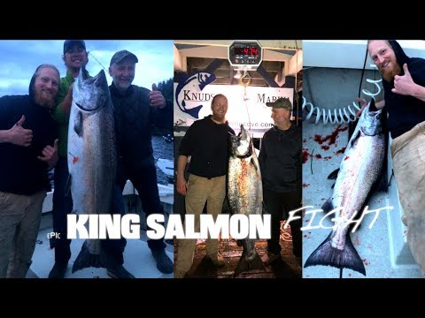 Huge FEEDER King Salmon. Ketchikan Alaska.