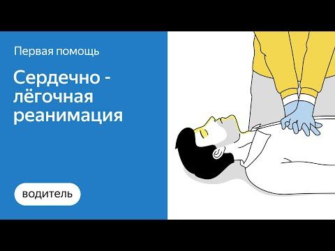 Как правильно оказать первую помощь при остановке дыхания | Яндекс.Про