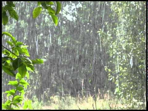 Объект Насмешек - Дождь