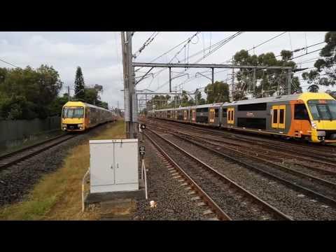 Sydney Trains Lidcombe Station Part 2