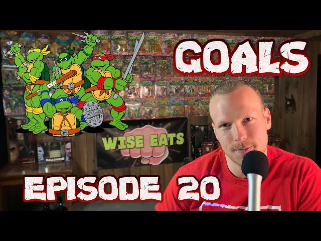 GOAL SETTING: 8 Tips & My Goals for 2019-2020 + TURTLE POWER (Wise Eats Podcast Episode #20)
