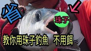 台中人釣魚不用魚餌 !用珠子 省很大!! 重複使用!!省錢又環保  台灣愛釣魚第五台第三十二集