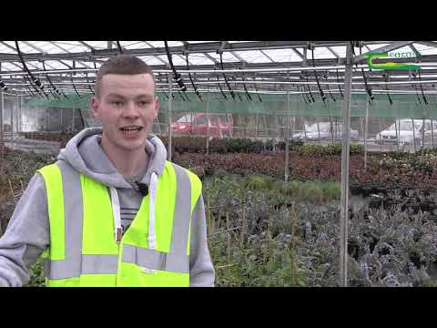 Teagasc Horticulture Student