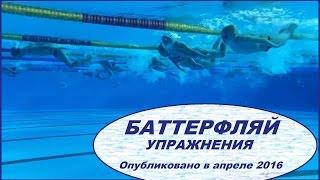 видео: БАТТЕРФЛЯЙ - упражнения