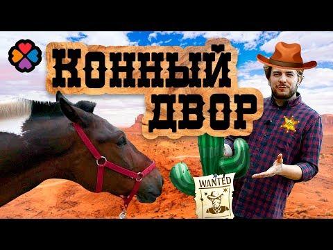 КУДА СХОДИТЬ В МОСКВЕ / Катаемся на лошадях, учимся управлять и ухаживать!