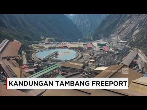 Kandungan Cadangan Tambang Freeport Capai 2,8 Miliar Ton