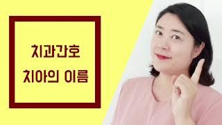 쩡샘]남양주 장현간호학원-간호조무사 시험대비요점정리 강…