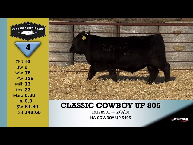 Classic Angus Ranch Lot 4