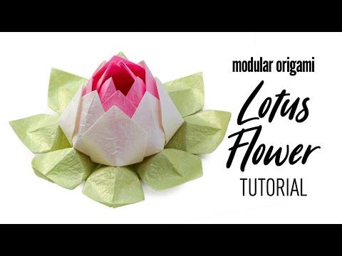 Modular Origami Lotus Flower Tutorial - DIY - Paper Kawaii