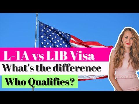 L1A manager visa vs L1B employee visa - ImmigrationBiz - YouTube