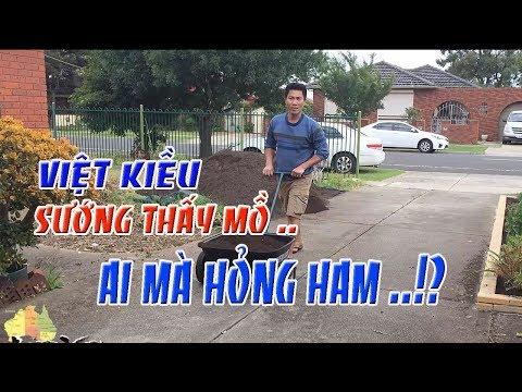 Việt kiều sướng thí mồ , ai cũng ham   cuộc sống Úc