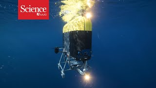 Underwater robot may unearth climate mysteries
