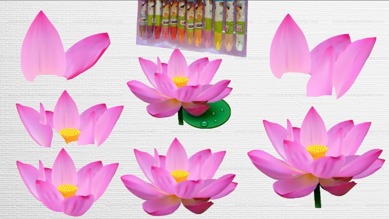 Flowers Coloring Pages For Kids Lotus Flower Amazing Flower