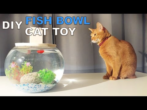 How to make a Fishbowl Cat Toy
