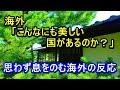 海外「日本は本当に美しく素晴らしい国だ」一本の動画をみた海外から賞賛の嵐