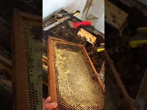 Вилка культиватор распечатки медовых сотов