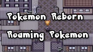Pokemon Reborn, Roaming Pokemon, Teddiursa, Lillipup, Zangoose, Zorua