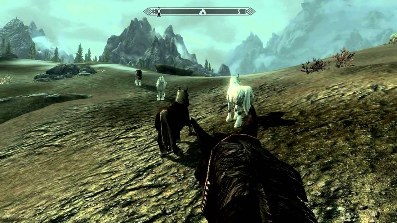 The Elder Scrolls V: Skyrim Wild Horses :D