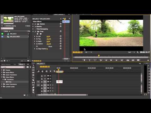Adobe Premiere Pro - export widescreen video without letterboxing