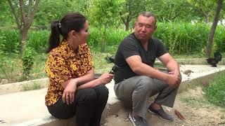 павлин кушун баккан Баатырбек ага