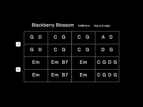 Blackberry Blossom Backing Track   100 bpm   G major