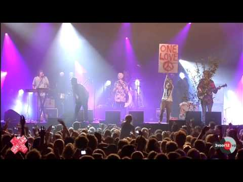 Will And The People - Lion In The Morning Sun - Lowlands 2012