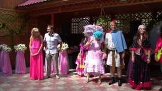 Свадьба Нежин 21 07 13г    гости танцуют на свадьбе украинская свадьба