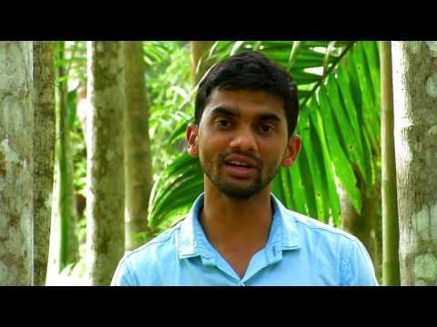 Areca Tea | Documentary HD