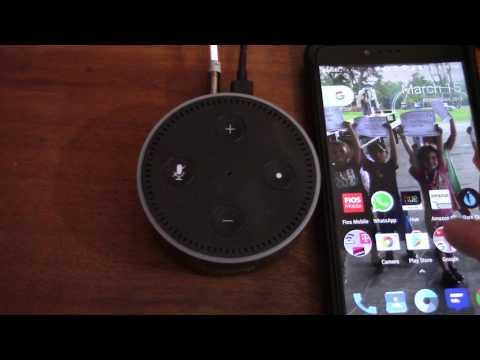 Use your Amazon Echo and Echo Dot as a bluetooth reciever
