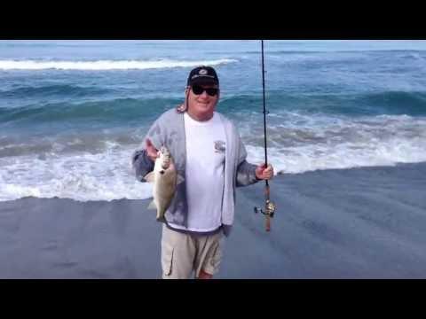 surf fishing in orange county ca...Spotfin croaker