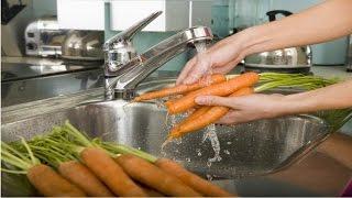 Curso Processamento Mínimo de Frutos e Hortaliças - Lavagem e Desinfecção - Cursos CPT