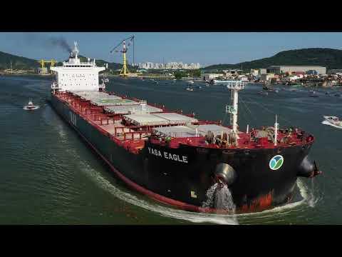 """Bulk Carrier """"Yasa Eagle"""" - 09/01/2020"""