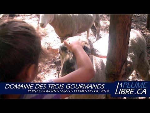 Domaine des 3 Gourmands | Portes ouvertes fermes du QC 2014