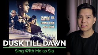 Dusk Till Dawn (Male Part Only - Karaoke) - ZAYN ft. Sia