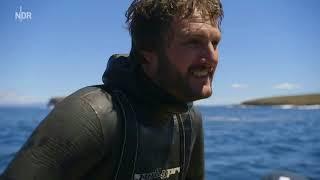 Doku : ▶️ Tasmanien die grösste Insel Australiens ◀️ (HD) 2018