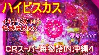 『CRスーパー海物語IN沖縄4②』ハイビスカス(イキナリ落下は快感度MAX) thumbnail