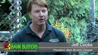 Own Your Own Dog Training Business With Bark Busters