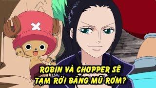 Robin và Chopper sẽ tạm rời Băng mũ rơm? - Phân tích