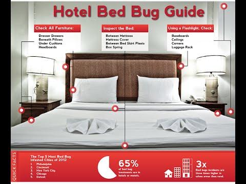 Superb Certified Bed Bug Inspection Mercer County NJ 732 309 4209