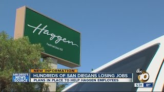 Efforts underway to help Haggen